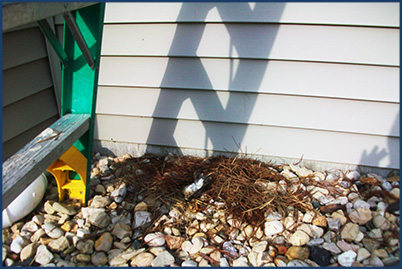 Dryer Vent Cleaning Residential Dryer Vents Wisconsin