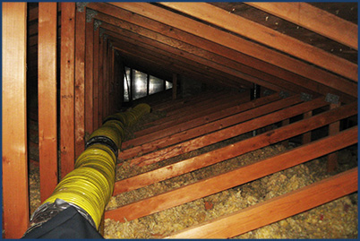 attic insulation removal wisconsin